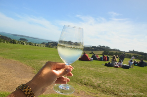 Cable_Bay_Vineyard_Waiheke